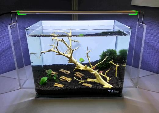 Another simple shrimp tank setup in office!